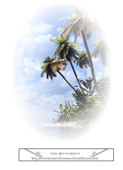Les tubes plages, palmier, mer 365455paysage005lolocreation
