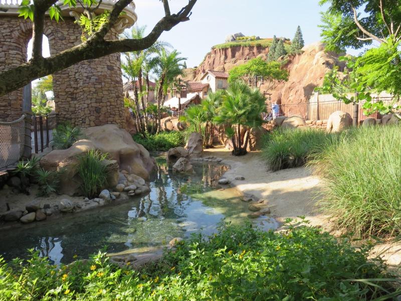 Walt Disney World + Universal Studios + Sea World + Busch Gardens Summer 2014 - Page 2 368185IMG0431