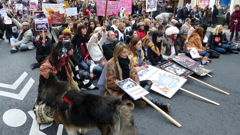 13 - Marche Contre La Fourrure - Paris 24 novembre 2012. 374499P1010097