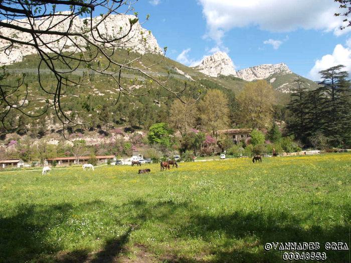 """La Vallée de St Pons """" La Vallée Rose """" à Gemenos Bouches du Rhône ♥♥♥ 37491536"""