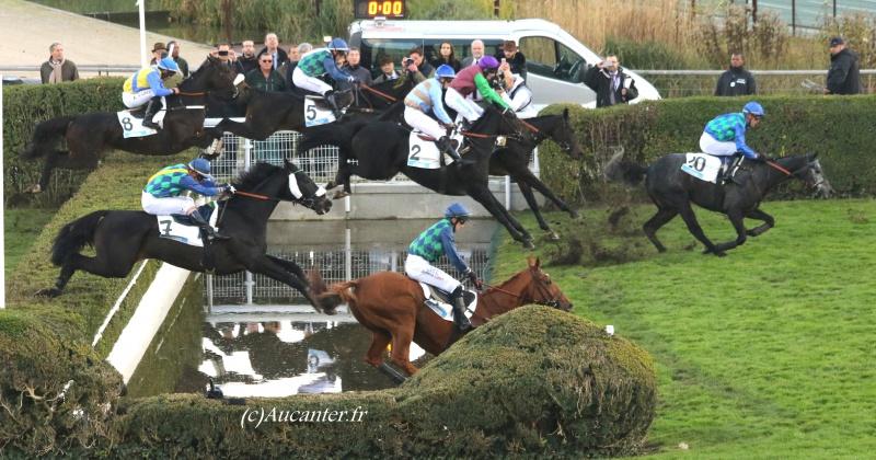 Photos Auteuil 6-11-2016 3764715J6A0329
