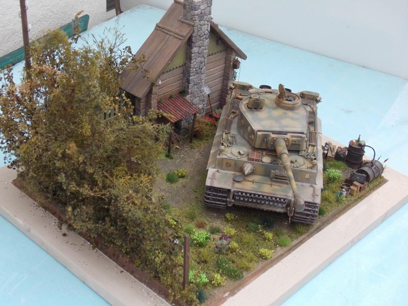 TIGRE S33  avant la bataille de Koursk juillet 43 (Dragon 1/35 dio DIODUMP) - Page 8 377617DSCN4705