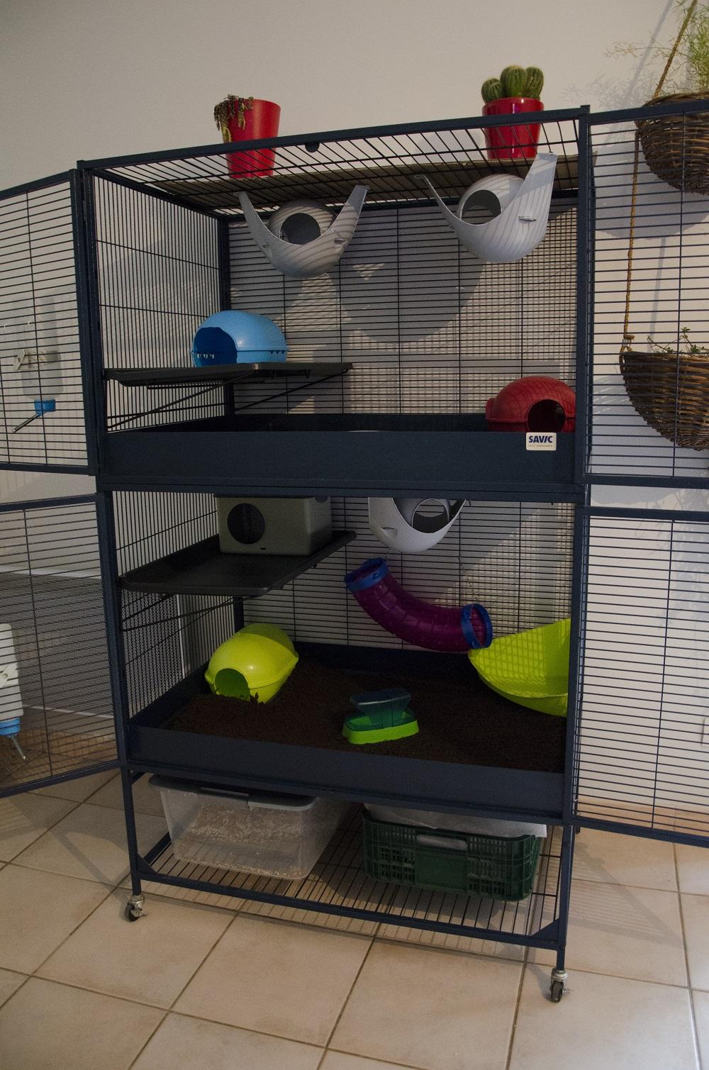 Photos de vos cages - Page 39 3892650163