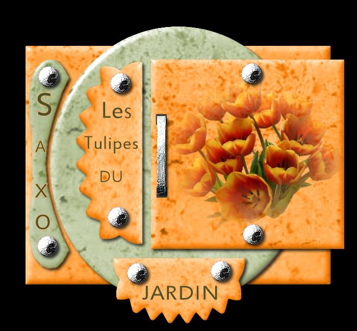 "29- ""Les Iris du Jardin "" 389834358916jardin"