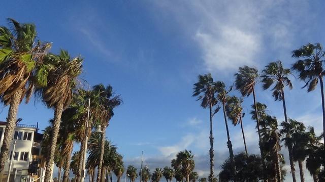 TRIP REPORT : 10 jours dans l'Ouest ~ {MAJ 22/03} de Los Angeles a Las Vegas, du Grand Canyon à la Death valley et Universal à Disneyland Resort  390073image835