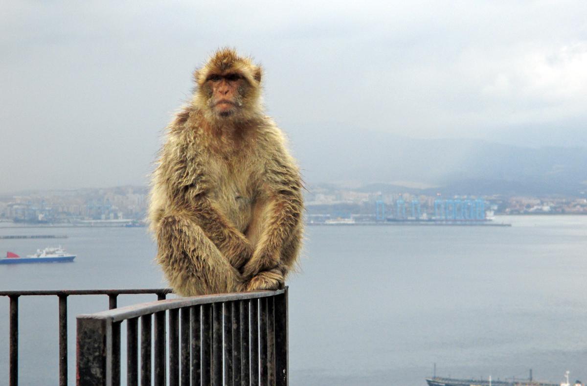 Gibraltar... sous la pluie. 391369056