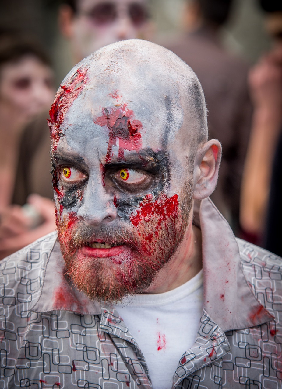 "Zombie ""Walk"" Lille 2014 #2 391387IMGP8696"