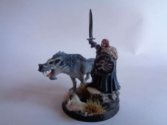 [Conversion] Figurines SdA ==> GoT : armée Stark - Page 2 392356DSC00741