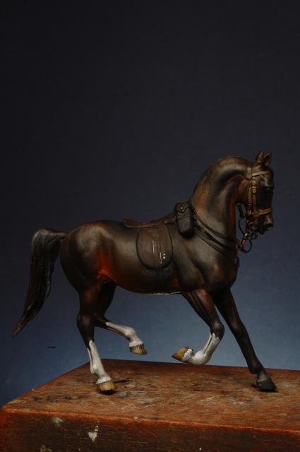 Hommage a JCC - le Risaldar-Major Abdul Gaffar Khan - 1st skinner horse 3947052016080807