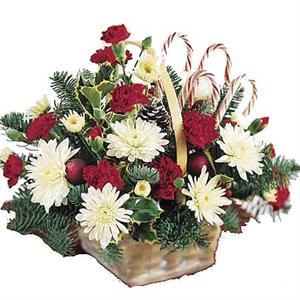 Funérailles de Jean Kerner le 19 janvier 1459 396681fleursnoel