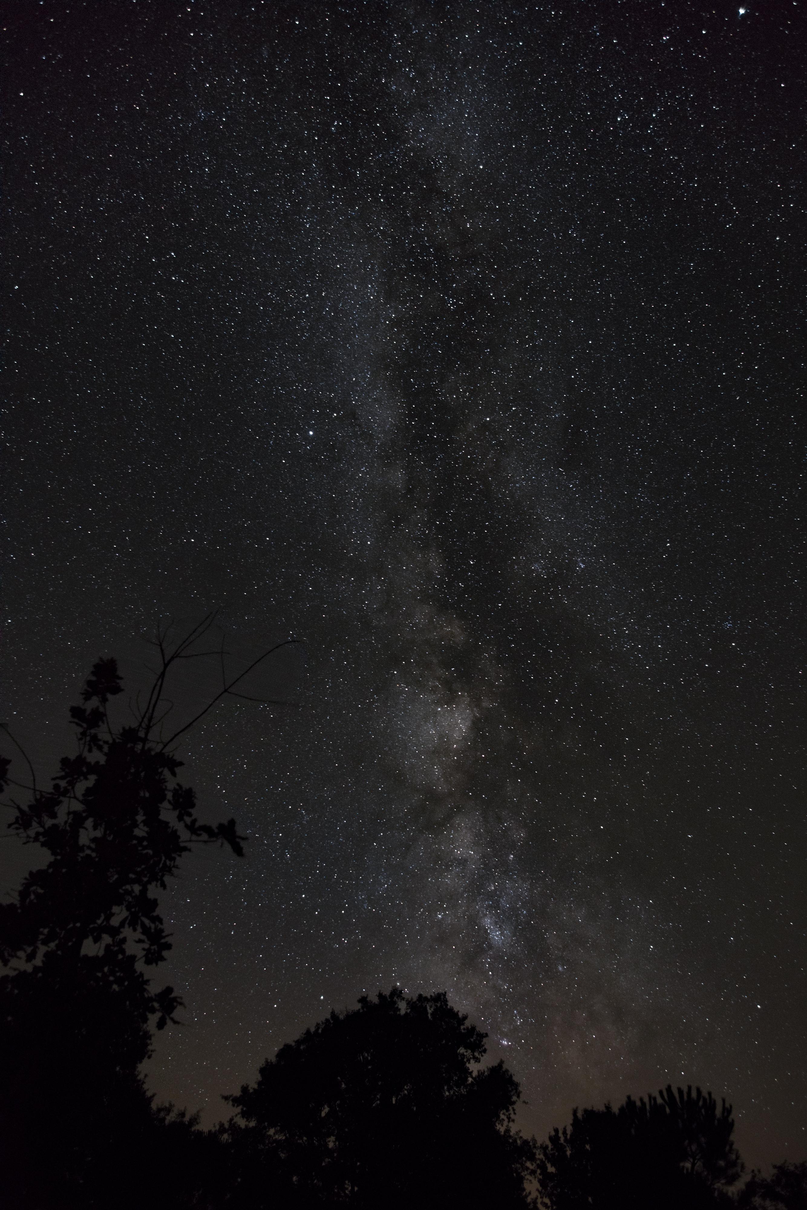 Voie Lactée - Page 6 397846VlForum
