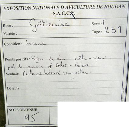 exposition d'aviculture Foire ST MATTHIEU 27 et 28 Septembre 2014 - Page 3 398227P1150713
