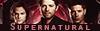 Supernatural - The end begins ♣ Fiche partenaire 40413036b2