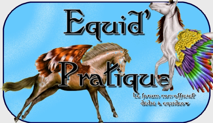 Equid'Pratique