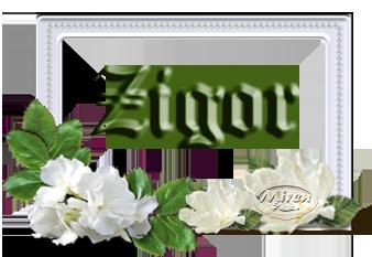 Nombres con Z - Página 3 4101821Zigor