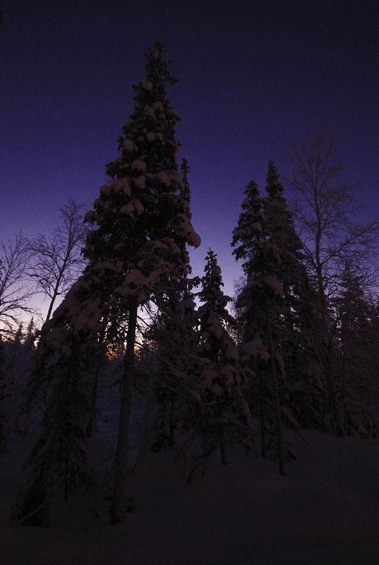 Laponie finlandaise: à la recherche du père Noël 410796324bc