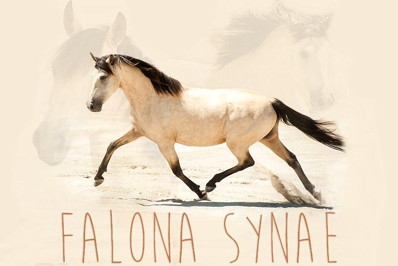 Crédits ; Falona Synae © 411395Falonasynaeheader18