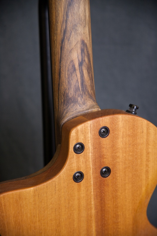 [LUTHIER] CG Lutherie - Page 4 41528320161116IMG9678