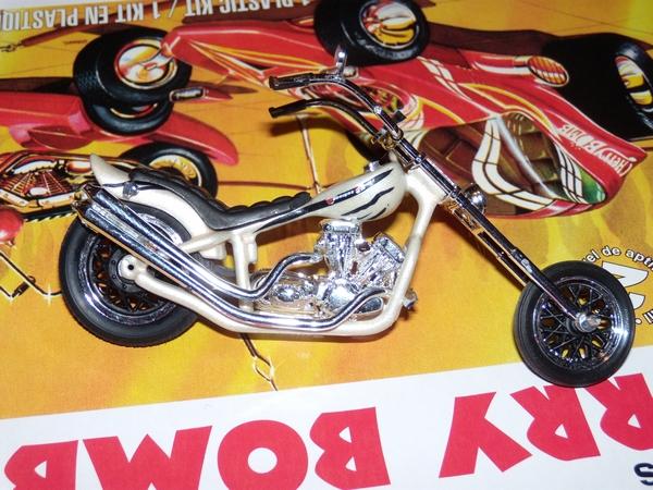Custom Chopper 420071DSCN2270