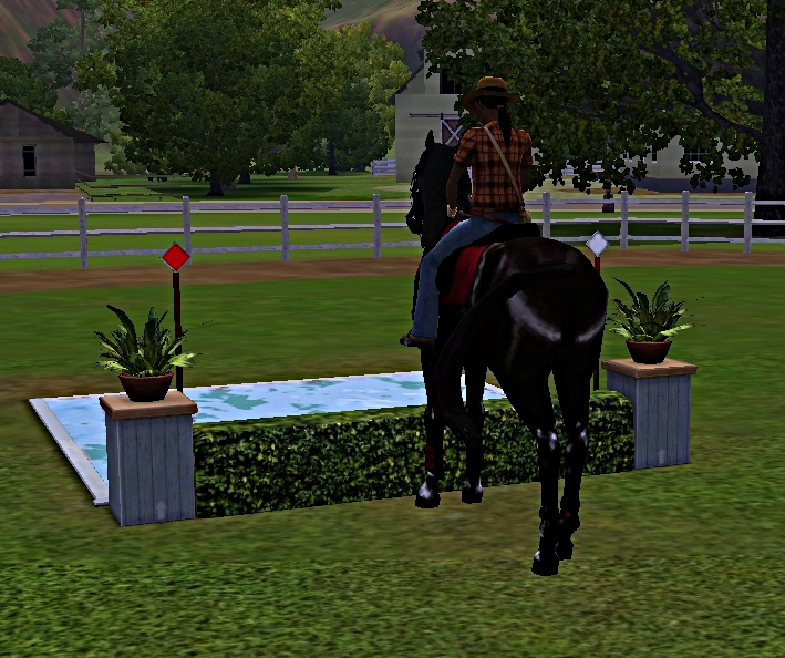 "[Challenge] Teens and Horses ""Sims 3"" - Page 3 424892entrainementausaut4"