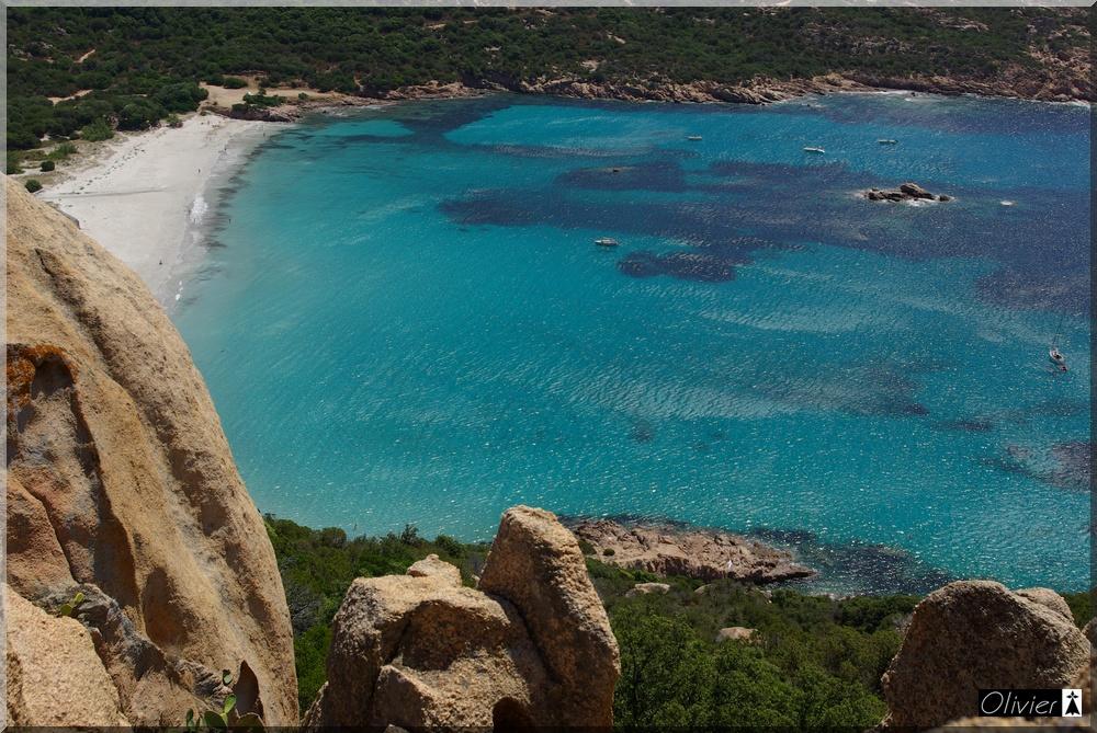 Les Tours Génoises du littoral Corse - Page 2 428190IMGP1733