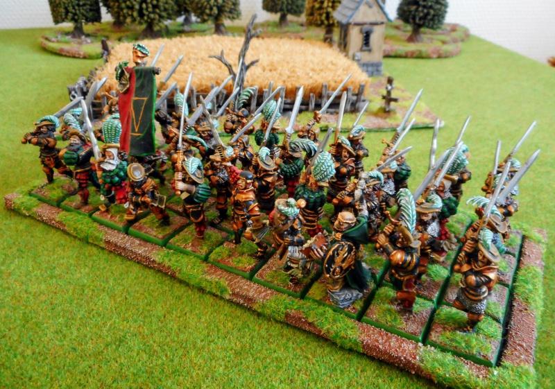 IVème Bataillon du Hochland - Page 3 434318DSCN0333
