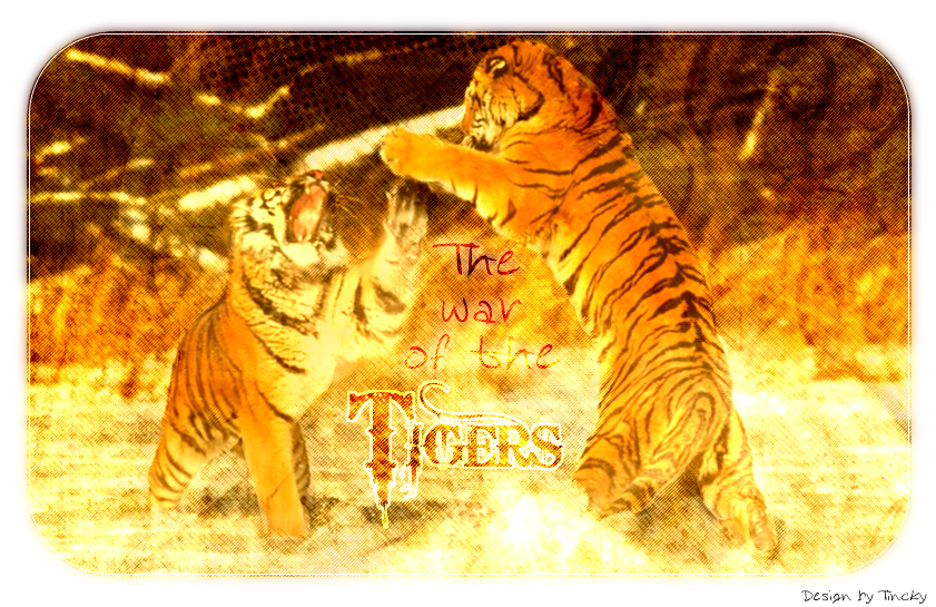 The war of the tigers