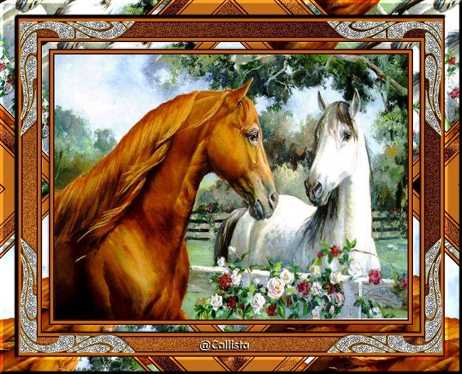 Cadre chevaux - Page 2 445792cadrechevaux