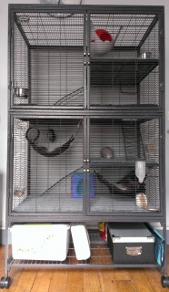 A vendre : Extension 163 Cage Critter Nation Midwest pour la 161 448493Cageentie768remonte769eface