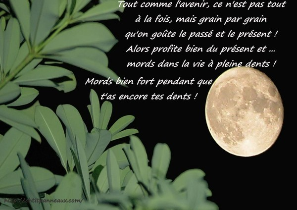Bon Mercredi 452487e3107d06