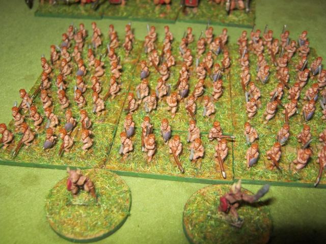 [Achat] Armées complètes peintes 458374IMG1161