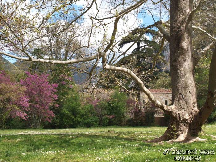 """La Vallée de St Pons """" La Vallée Rose """" à Gemenos Bouches du Rhône ♥♥♥ 46758816"""