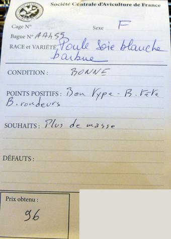 2014 - salon de l'Aviculture de Paris du 22/02/2014 au 02/03/214 - Page 4 469506P1130683