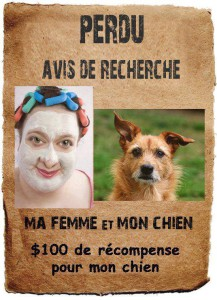 Petite pause sourire ! (*;') - Page 3 47268513759605679047933564008507640062576802371n217x300