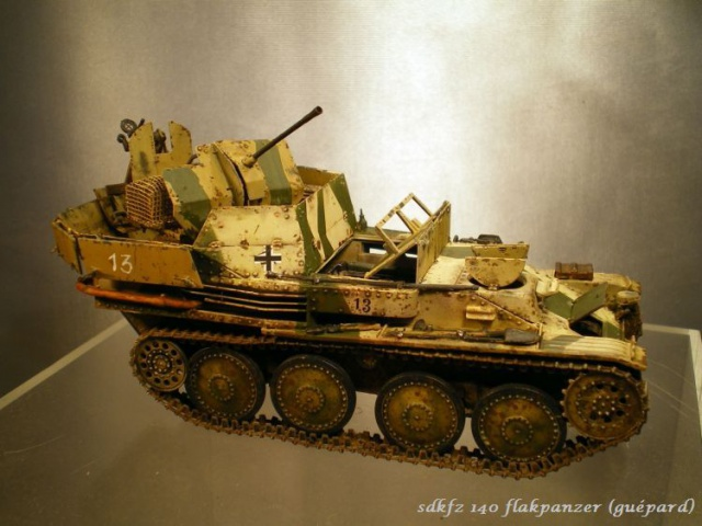 sd.kfz 140 flakpanzer (gépard) maquette Tristar 1/35 - Page 2 477844IMGP3225