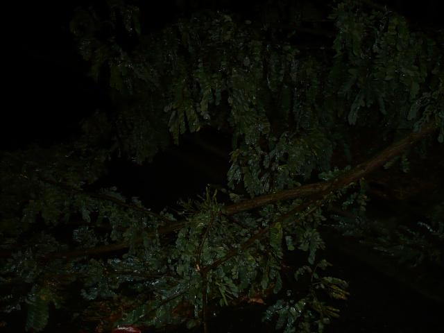 Orages monstres sur le Bordelais dans la nuit du 25 au 26/07 et du 26 au 27/07 488047P1200596