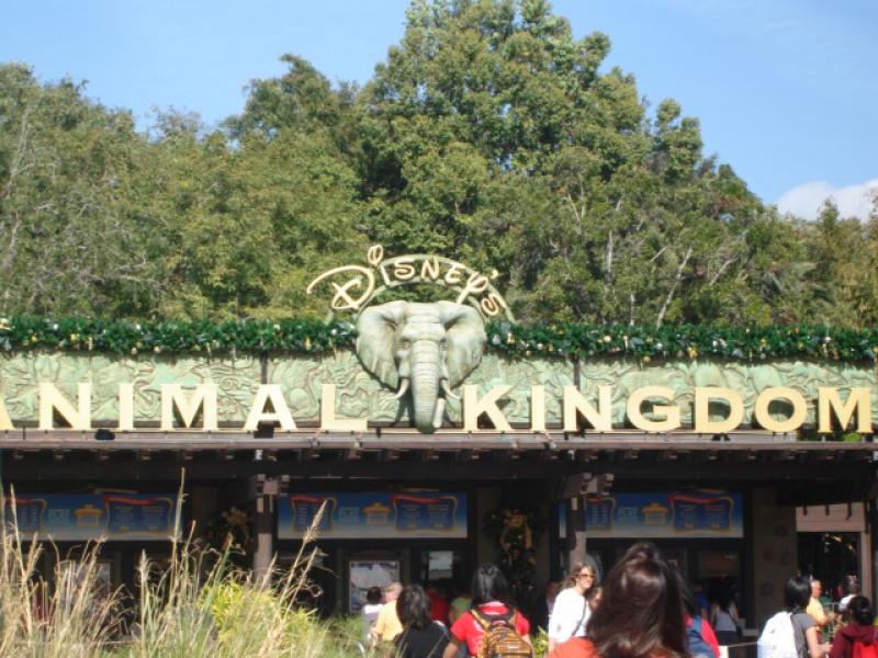 Walt Disney World + Universal Studios + Sea World + Busch Gardens Summer 2014 - Page 6 488101DSC02940