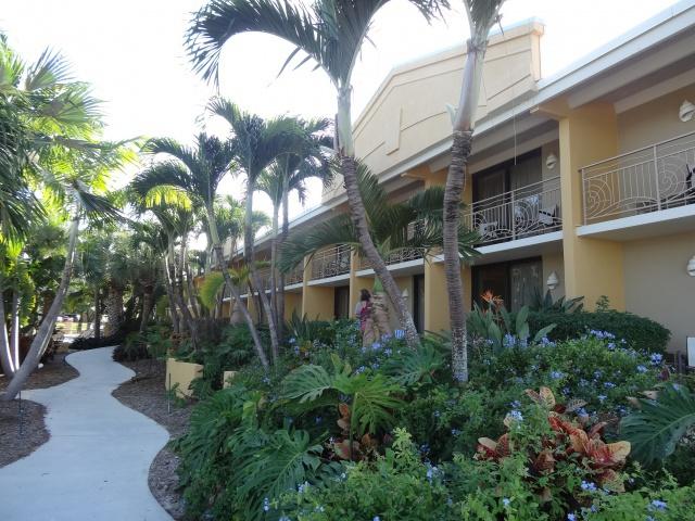 First Visit WDW/Miami/Key West halloween 2013 - Page 7 488572DSC04300