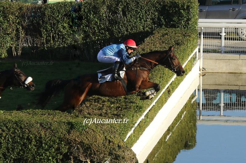 Photos Auteuil 6-11-2016 4950985J6A0620