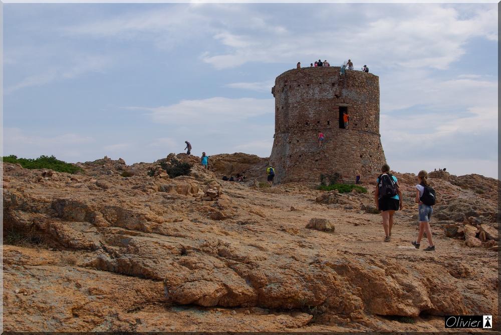 Les Tours Génoises du littoral Corse - Page 2 499360IMGP2181