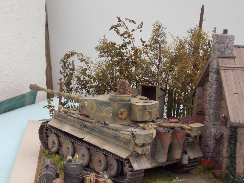 TIGRE S33  avant la bataille de Koursk juillet 43 (Dragon 1/35 dio DIODUMP) - Page 8 500182DSCN4713