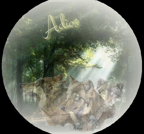 Lobos de Arga, pueblo gallego con una maldicion sus moradores se convierten en lobos cada cien años 504453adios