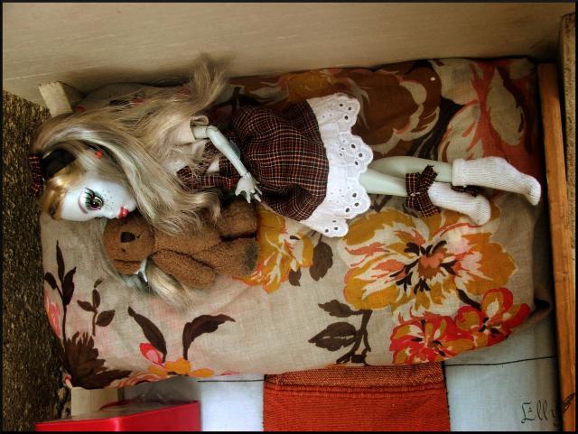 Lagoona vous fait visiter sa chambre...p2 507591DSCF0435