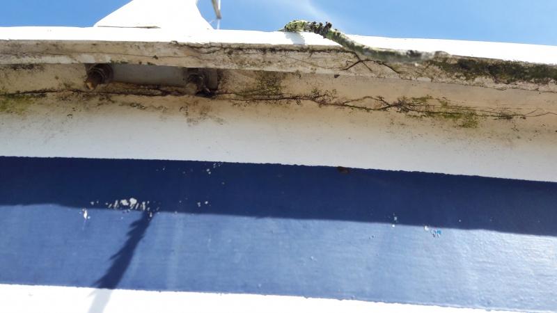 Fissures et infiltration d'eau à l'intérieur 50768420170604173039