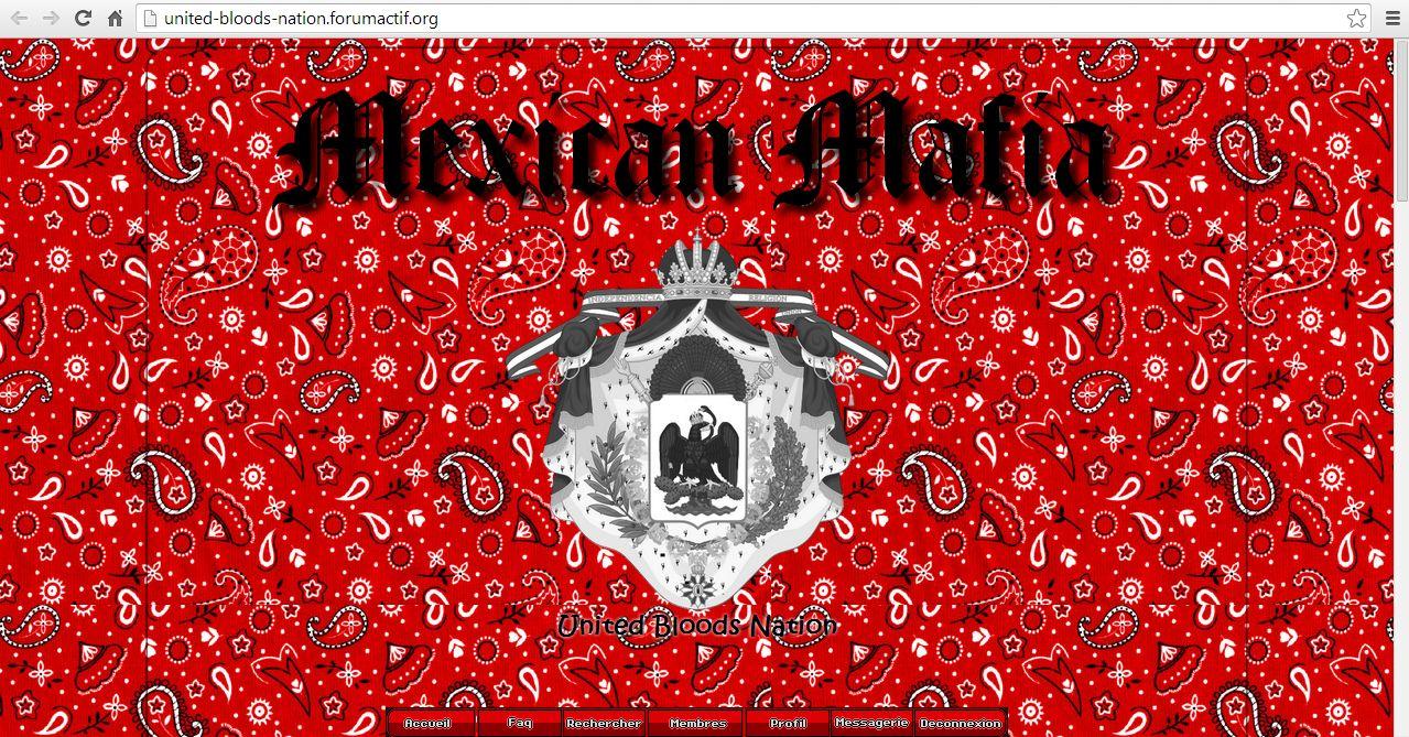 [Pablo] United Bloods Nation [G] 508935forum2
