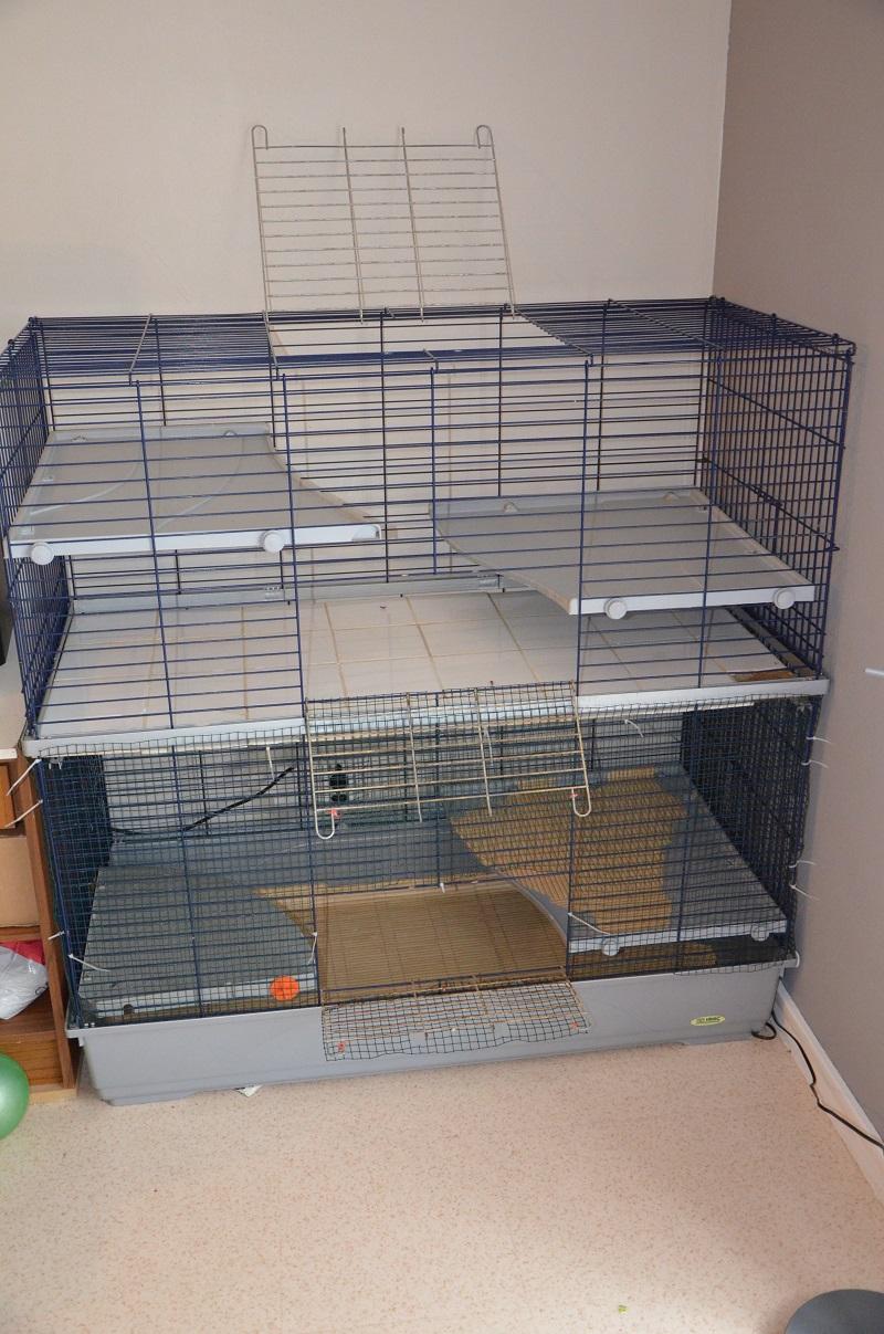 Cage imac 120 double 509597DSC1385