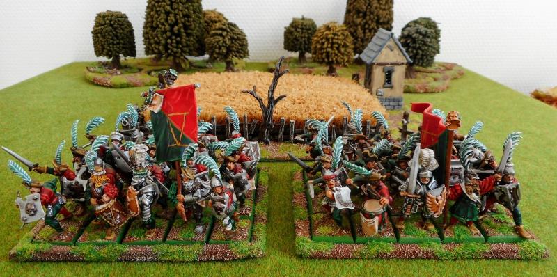 IVème Bataillon du Hochland - Page 3 522910DSCN0301
