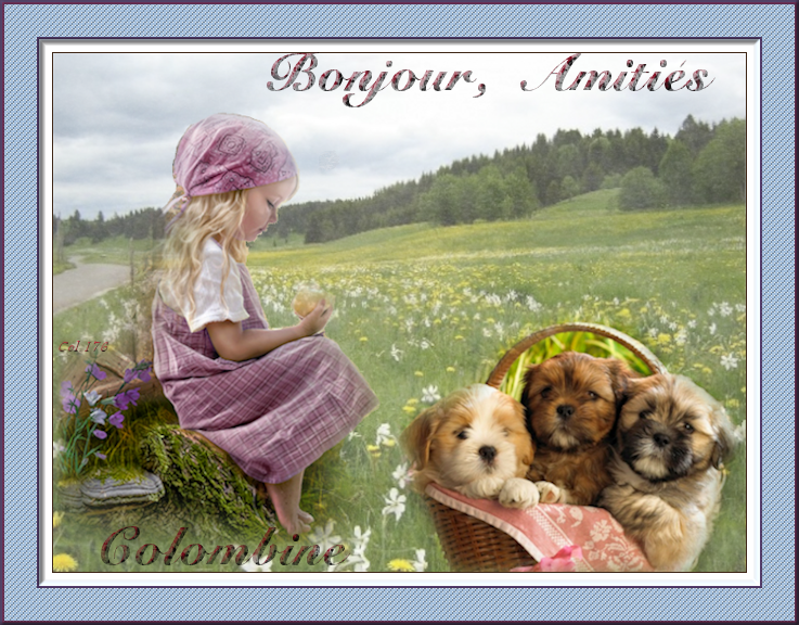 mardi11/3/2014 idem 523761Fillette3chiotsBonjour