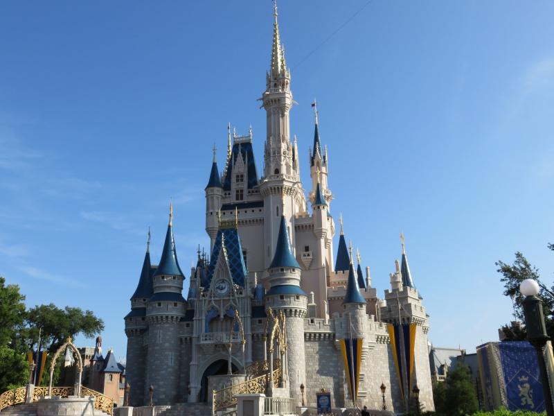 Walt Disney World + Universal Studios + Sea World + Busch Gardens Summer 2014 - Page 2 525978IMG0420