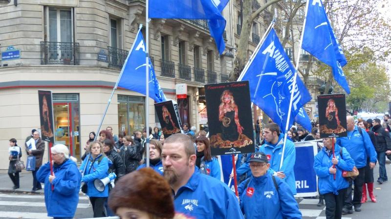 13 - Marche Contre La Fourrure - Paris 24 novembre 2012. 530738P1010695